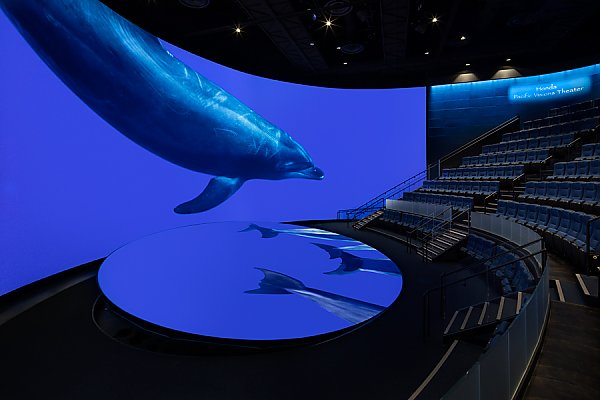 Pacific Visions Theater with Dolphin